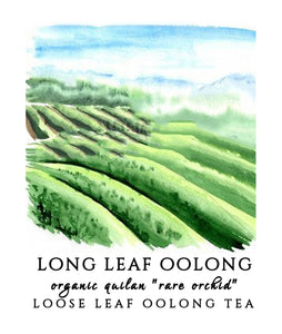 "Long Leaf Quilan ""Rare Orchid"" Oolong"