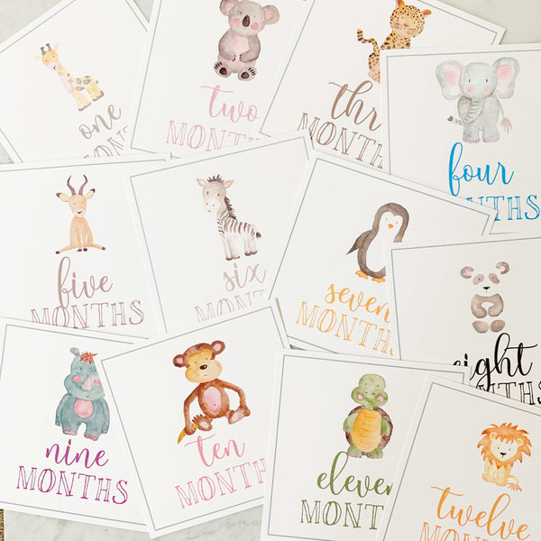 Watercolor Month Cards by Fort52