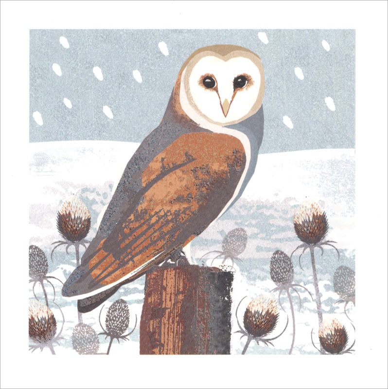 Owls & Teasles - Christmas Cello Packs