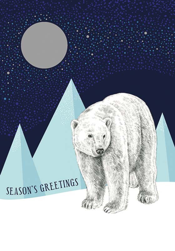 Polar Bears - Christmas Boxed Cards