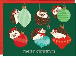 Holiday Hedgehogs Boxed Card