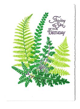 Birthday Ferns Card