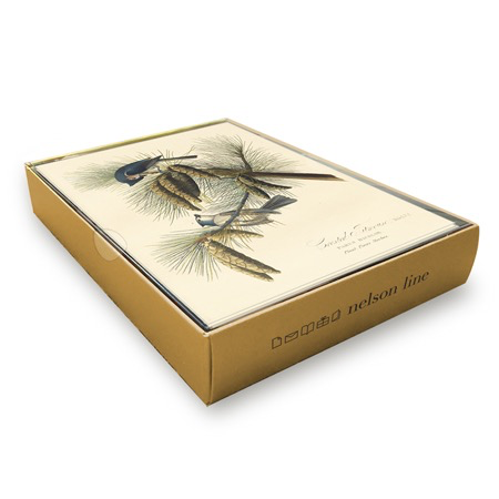 Crested Titmouse Boxed Cards