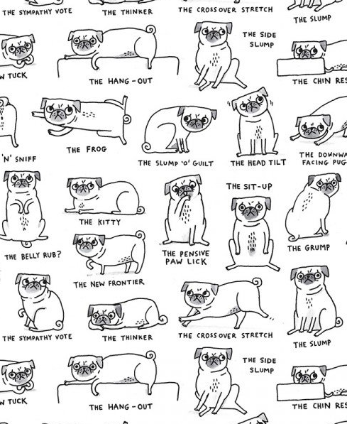 Pug Positions Wrap Paper Sheet (Pick Up Only)