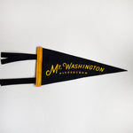 Neighborhood Pennants
