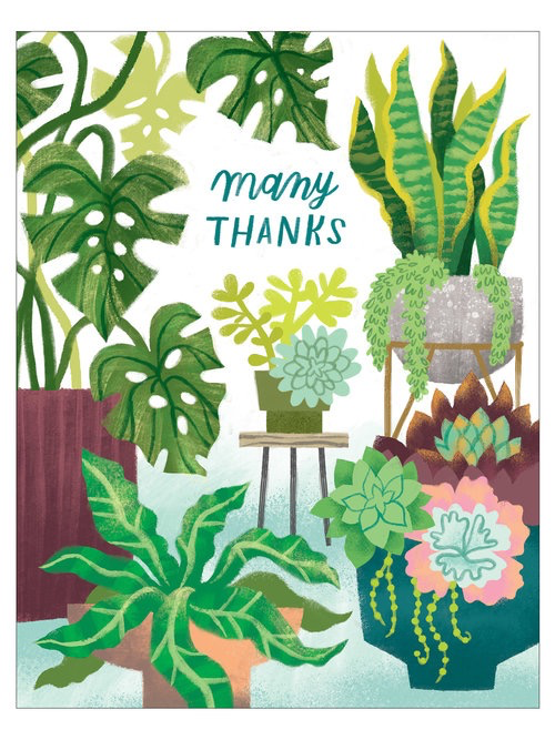 Houseplants Thank You Card