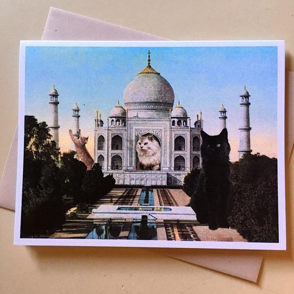Cat-Astrophe:  Taj-Mahal Card