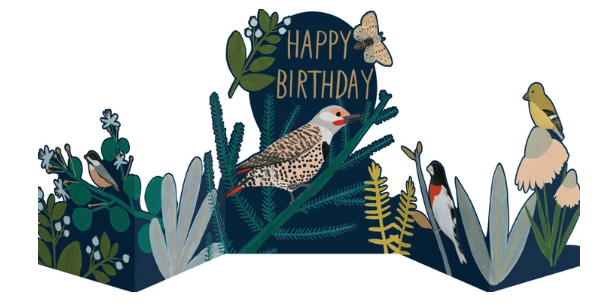 Chicago School Birds Concertina Birthday Card