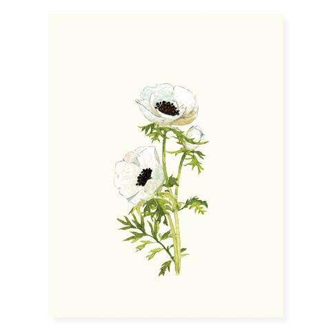 Anemone Blossoms Card