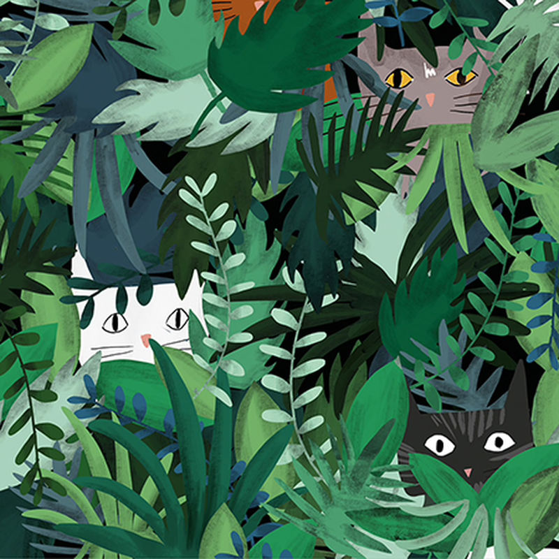 Jungle Cat Wrap Paper (Pick Up Only)