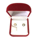 14k Yellow Gold Cat Pow Stud Earrings