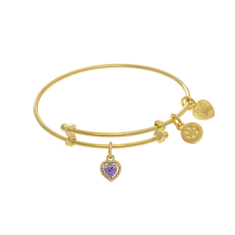 June Heart Shape CZ Birthstone Charm Expandable Tween Bangle Bracelet