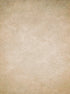 Tan Beige Printed Muslin Textured Old Masters Printed Floor or Backdrop - 15046