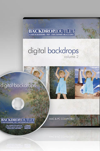 DSC102 Mixed Styles Digital Backdrops - Backdrop Outlet