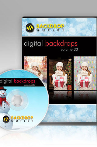 DSC130 Christmas Winter Holiday Digital Backdrops - Backdrop Outlet