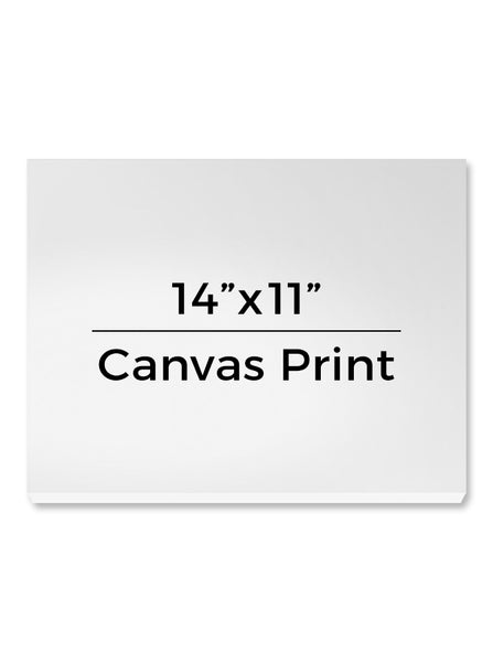 "Photo Gallery Canvas Wrap Print Custom - 14""x11""  - CW102 - Backdrop Outlet"