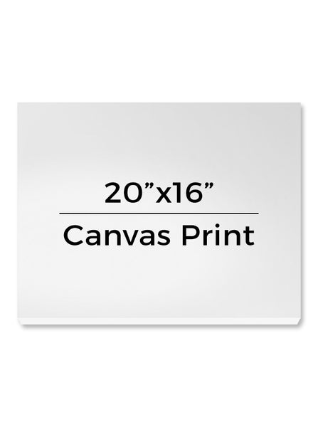 "Photo Gallery Canvas Wrap Print Custom - 20""x16"" - CW103 - Backdrop Outlet"