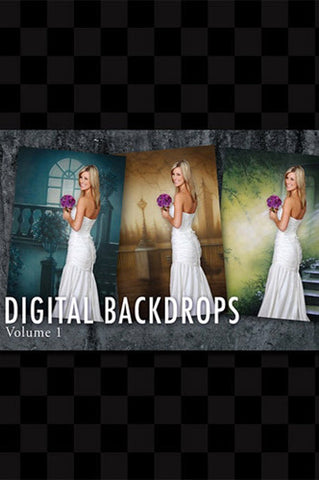 Digital Backdrops DVD #1 OVER 200 DIGITAL BACKDROPS (Includes CD'S 1-9  - DVD1 - Backdrop Outlet