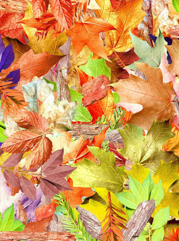 x027 Autumn Colorful Leafs Backdrop - Backdrop Outlet