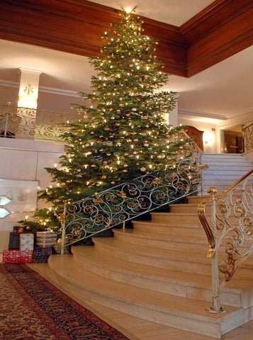 Christmas Tree Grand Staircase Backdrop - x063 - Backdrop Outlet