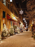 x080 Christmas Street Backdrop - Backdrop Outlet