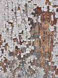 1016 Printed White Birch Wood Floor Backdrop - Backdrop Outlet - 2