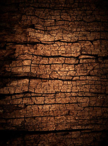 1166 Printed Cracked Weathered Wood Backdrop - Backdrop Outlet