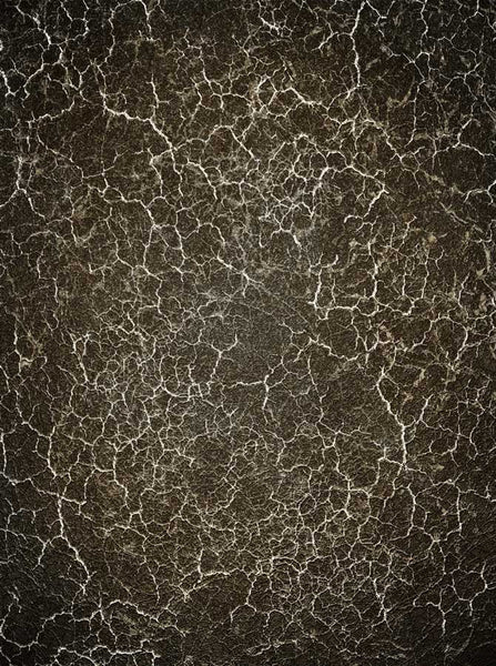 Black Marble Backdrop - 1425 - Backdrop Outlet