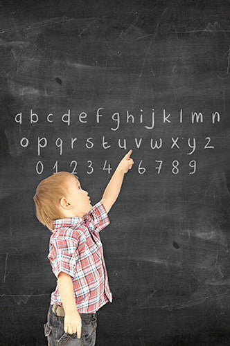 ABC Chalkboard Printed Photography Backdrop - 1470 - Backdrop Outlet