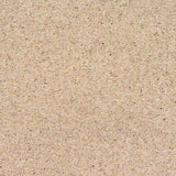 3500 Printed Beach Sand Backdrop - Backdrop Outlet