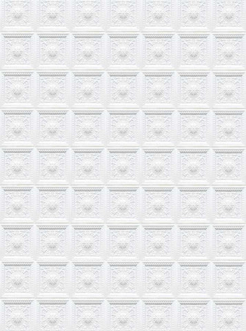 4641 White Wall Victorian Pattern Photo Background - Backdrop Outlet