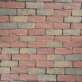 6056 Mixed Brick Wall Backdrop - Backdrop Outlet