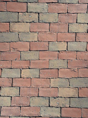 Mixed Brick Wall Backdrop - 6056 - Backdrop Outlet