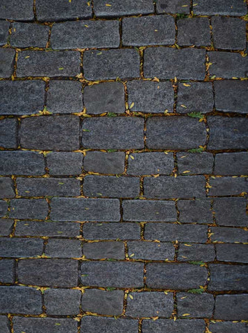 Black Brick Backdrop - 6072 - Backdrop Outlet