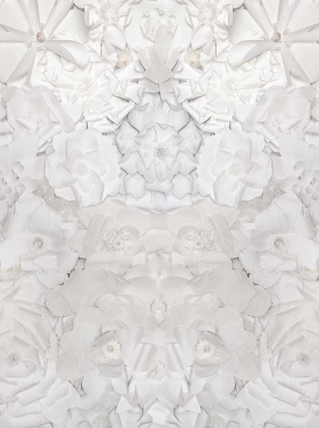 White Paper Flowers Pattern Background - 6101 - Backdrop Outlet