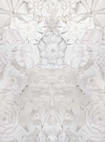 6101 White Paper Flowers Pattern Background - Backdrop Outlet