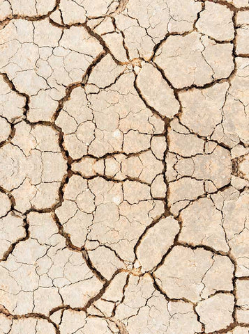 6223 Brown Sand Stone Cracks Printed Backdrop - Backdrop Outlet
