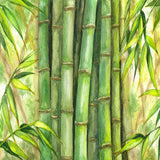 Green Bamboo Watercolor Jungle Book Theme Printed Backdrop - 6377 - Backdrop Outlet