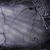 640 Spooky Halloween Spider Web Backdrop - Backdrop Outlet