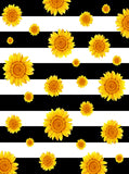 Sunflowers and Stripes Backdrop - 6887