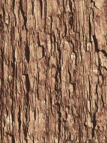 7176 Wood Bark Backdrop - Backdrop Outlet