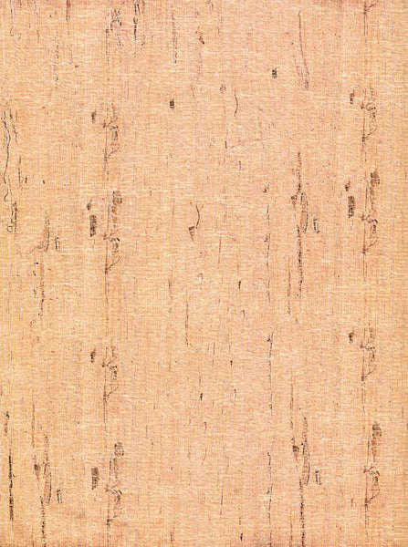 Beige Birch Wood Backdrop - 7180 - Backdrop Outlet