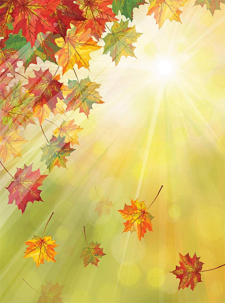 Sunshine Bokeh with Autumn Leaves Backdrop - 7612 - Backdrop Outlet