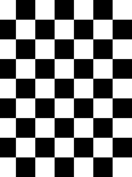 820 Black White Checkered Backdrop - Backdrop Outlet
