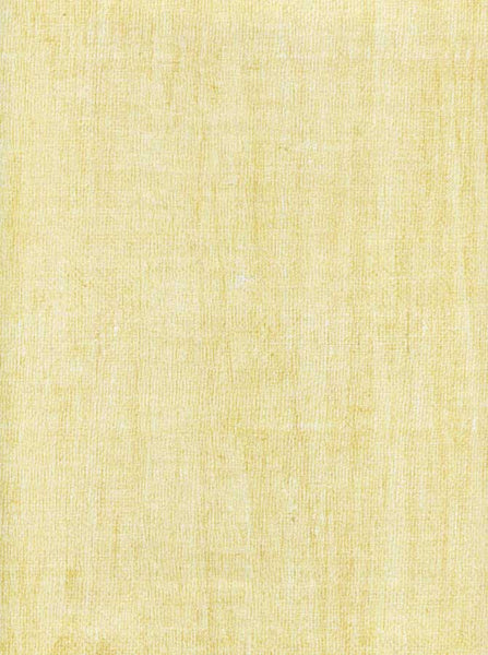 Texture Ivory Backdrop - 9724 - Backdrop Outlet