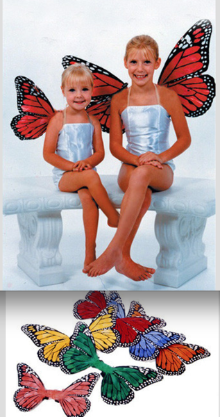 "Large 19"" Butterfly Wings (Multiple Colors Available) - GLBW2 - Backdrop Outlet"