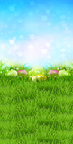 Easter Bokeh Sky Backdrop - 3524 - Backdrop Outlet