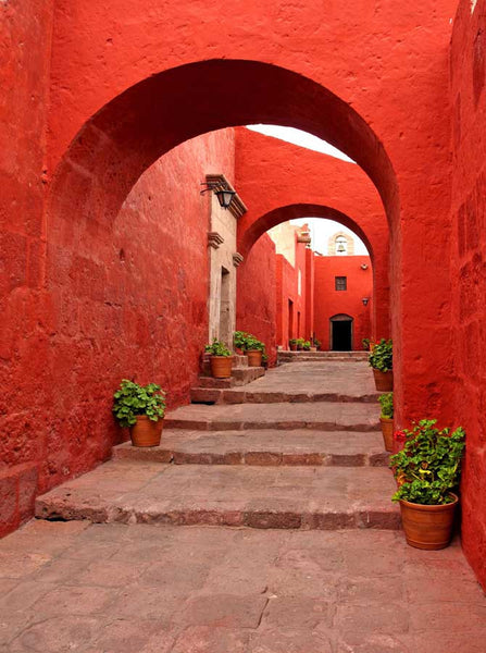 Architecture Red Arches Backdrop - 1308 - Backdrop Outlet