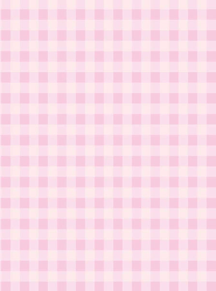 1343 Pink Gingham Check Backdrop - Backdrop Outlet