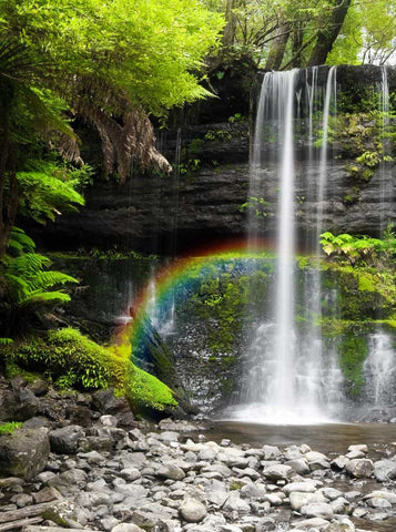 134 Rainbow Waterfall With Stone Shoreline Backdrop - Backdrop Outlet